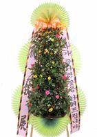 장미 포트식화환