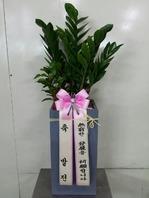 금전수사각(부자되세요!))♥개업선물